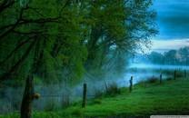 大自然绿色的美景桌面壁纸